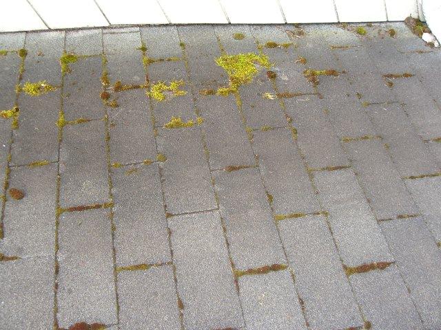 Composite – Before Air cleaning
